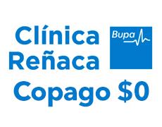renaca_0.png